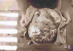 Panaderías a domicilios.com pan fresco siempre y en todo momento. Sugerencias de conservación del pan 1
